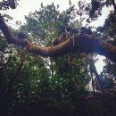 InstagramTroian-003309.jpg